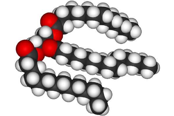 Как выглядят триглицериды