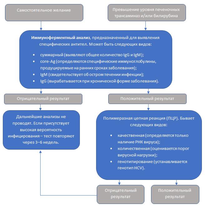 Схема диагностики гепатита С