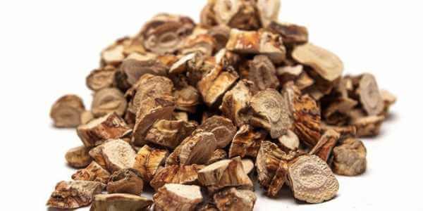 Кора дуба от потливости и запаха ног: полезные свойства и правила применения средства