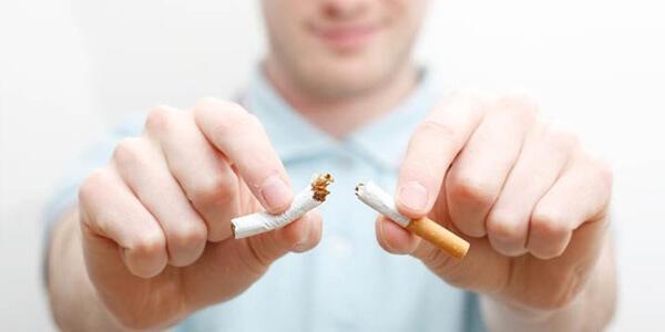 Курение и потенция у мужчин: как влияет, особенности воздействия сигарет на мужскую половую систему