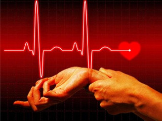 Частота сердечных сокращений норма у взрослых