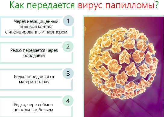 Как передается ВПЧ