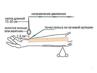 Как измерить давление без тонометра по пульсу и иными способами
